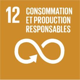 Le douzième objectif de développement durable (ODD) de l'ONU : établir des modes de consommation et de production durales. Un symbole de l'infini représentant la durabilité