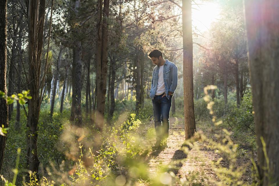 Un  homme se ballade en forêt, il regarde la nature et réfléchit à son rapport à l'environnement.