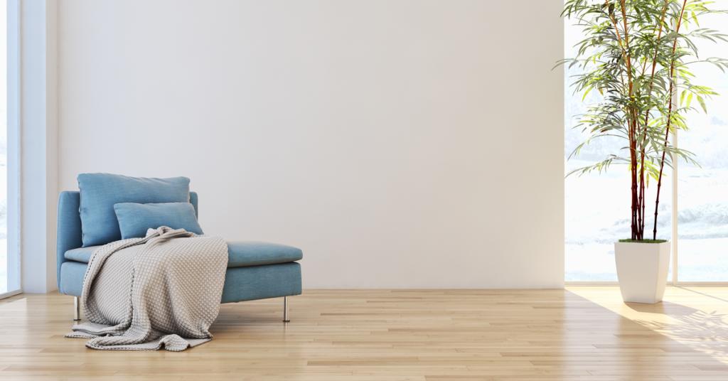 Pièce vide avec fauteuil et plante