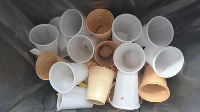 gobelets en plastique blanc et beiges dans une poubelle en plastique
